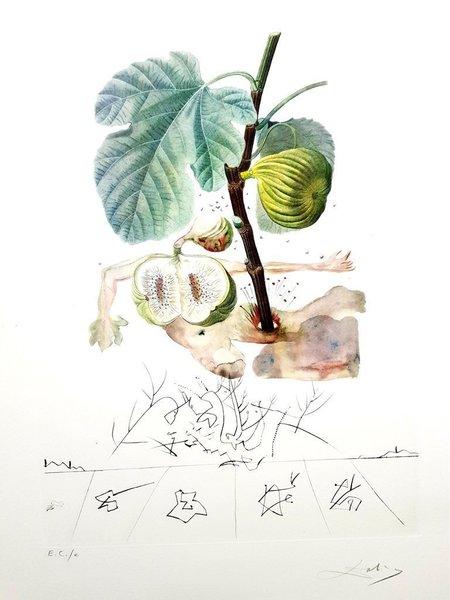 (After) Salvador Dali Salvador Dali   Fig Man   Original Hand Signed Lithograph 1969