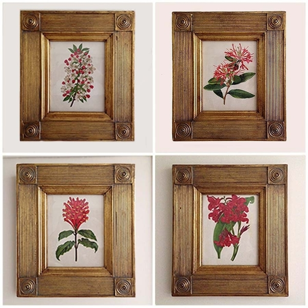 Set Of Four Antique Botanical Frames