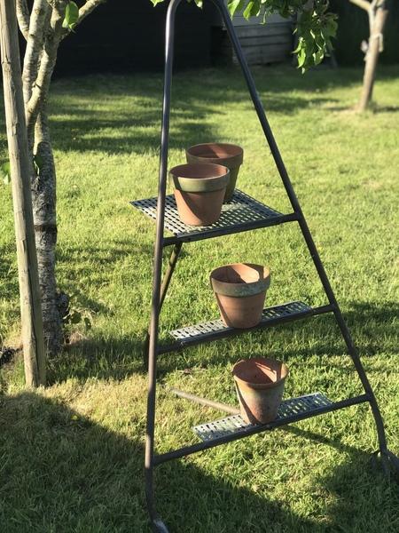 Vintage Orchard Ladders